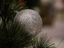 Christmas tree in interior royalty free stock photography