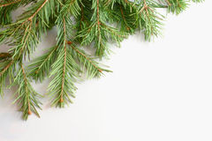 Christmas tree isolate on white Stock Photography
