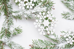 Christmas tree isolate on white background Stock Images