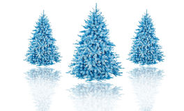 Christmas tree in isolated background decoration Royalty Free Stock Photos
