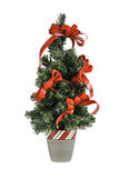 Christmas Tree Isolated Royalty Free Stock Image