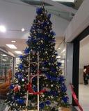 Christmas tree 9? stock photography