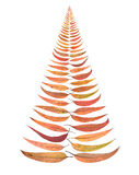 Christmas Tree Leaves Isolated Stock Images