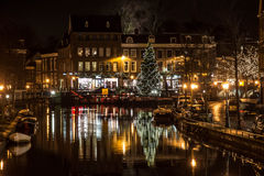 Christmas Tree in Leiden Stock Image