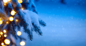Christmas tree light; blue snow background Stock Images
