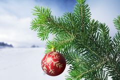 Christmas. Tree light ornament decoration presents winter Royalty Free Stock Photo