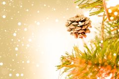 Christmas tree with light snow background for Chrismas New year stock image