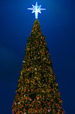 Christmas tree with lighting decorate Stock Photo