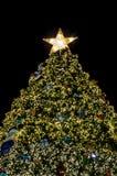 Christmas tree lighting Stock Photos