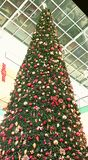 Christmas tree with lighting. Christmas tree mall lighting trinkets golden pine cones at Abu Dhabi Mall UAE United Arab Emirates Stock Photos
