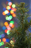 Christmas tree and lights Stock Photo