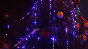 Christmas tree lights. Christmas tree blue lights decoration flashing outdoor in the night stock video