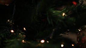 Christmas Tree lights, blur to focus. Christmas tree lights background effect, blur to focus stock video