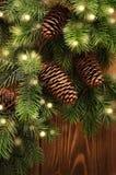Christmas tree and lights Stock Image