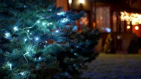 Christmas tree lights. Christmas tree with colorful bokeh and christmas lights stock footage