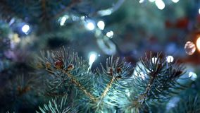 Christmas tree lights. Christmas tree with colorful bokeh and christmas lights stock video