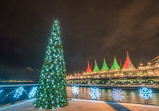 Christmas tree  lights  decoration Royalty Free Stock Images
