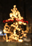 Christmas tree with lights glowing card. Christmas tree with lights glowing and snow card Stock Images