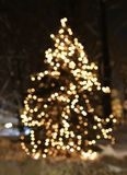 Christmas tree with lights glowing. And snow Royalty Free Stock Images