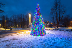 Christmas tree lights in the park, Stock Images