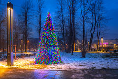 Christmas tree lights in the park, Royalty Free Stock Photo
