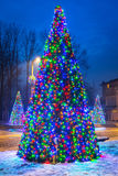 Christmas tree lights in the park Stock Image