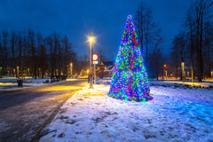 Christmas tree lights in the park Stock Photo