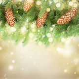Christmas tree with lights Royalty Free Stock Photo
