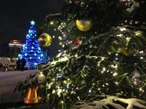 Christmas Tree Lights in Snow. Royalty Free Stock Images