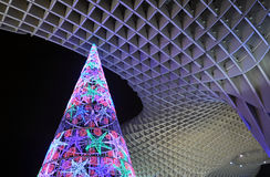 Christmas tree lit up, Seville, Andalusia, Spain Stock Photos
