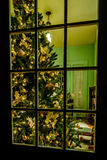 Christmas tree in living room Stock Photos