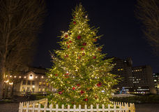 Christmas Tree in London Royalty Free Stock Images