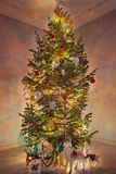 Christmas tree with luminous garlands Stock Images