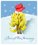 Christmas tree made of bananas. Christmas tree made of bananas, the object of desire of a monkey.Vector Royalty Free Stock Image
