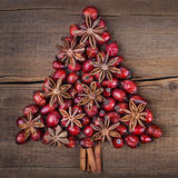 Christmas tree made of cinnamon, anise and dog-rose Royalty Free Stock Photo