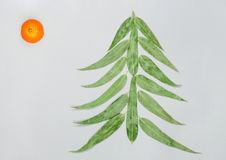 Christmas tree made of eucaliptus leaves and mandarin. Flat lay. Holiday concept. Copy space. is sun symbol. stock photography