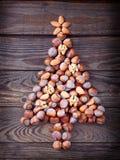 Christmas tree made of hazelnuts Stock Photos