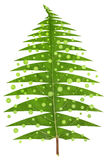 Christmas tree made from leaf. Abstract image of a green Christmas tree made from green  summer leaf. Isolated, contains patches Stock Photos