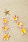 Christmas tree made of sand and frangipani. Flowers. Xmas beach holiday concept stock photography
