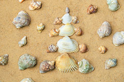 Christmas tree made of shells on the sand Royalty Free Stock Photography