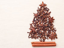 Christmas tree made from spices Royalty Free Stock Photography