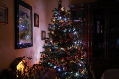 Christmas tree. The magic of the Christmas tree with its lights Stock Photo