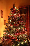Christmas tree. The magic of the Christmas tree with its lights Royalty Free Stock Photo