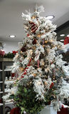 Christmas tree. The magic of the Christmas tree with its lights and its colors Stock Photography
