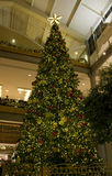 Christmas tree in mall stock images