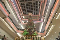 The christmas tree at mall 2016. Christmas tree at Festival Walk mall at 2016 Stock Photo