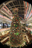 Christmas tree at mall on 2015. Christmas tree in Festival Walk mall in Kowloon Tong on 2016 Royalty Free Stock Image