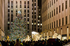 Christmas tree in Manhattan Stock Photography
