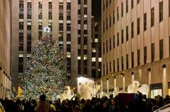 Christmas tree in Manhattan. Traditional Christmas tree at Rockfeller center in Manhattan, Dicember 2011 stock photography