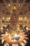 Christmas Tree in Marshall Fields Department Store, Chicago, Illinois Stock Photos